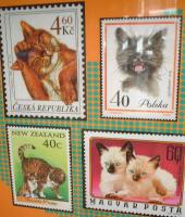 ネコ展ポスター