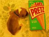 プリッツ(お菓子)の箱と大きさ比べ